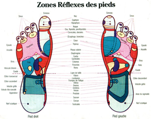 Zones Réflexes